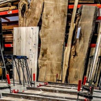Vaste inventaire de tranches d'arbre pour vos projets